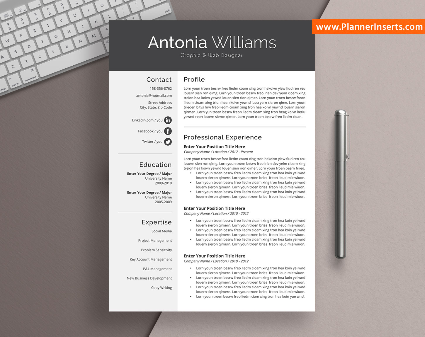 cv template for word  professional cv format  editable cv